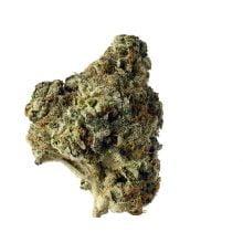 Amsterdam Genetics - AK Choco Kush (5 seeds pack)