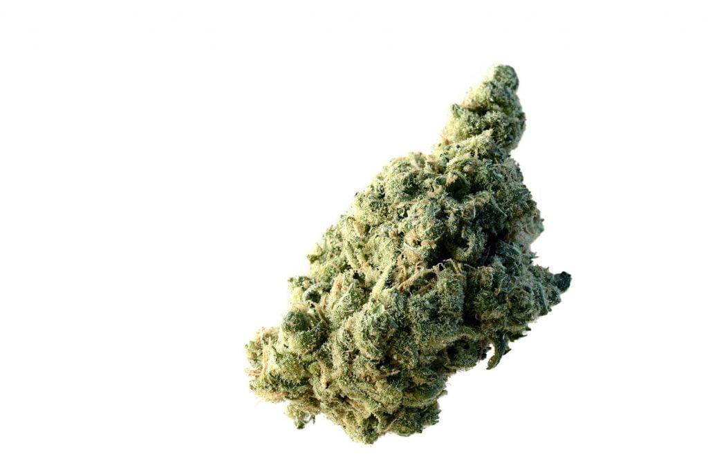 Amsterdam Genetics - Lemon Ice (5 seeds pack)
