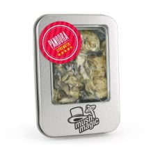 Mush Magic Pandora Magic Truffles 15g