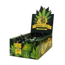 Cannabis lollipops box Energy Skunk THC free (70pcs/display)