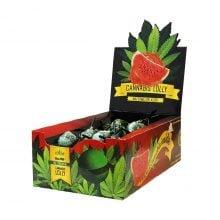 Cannabis lollipops box Watermelon Kush THC free (70pcs/display)