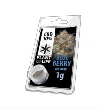 Plant of Life CBD Solid 10% Blueberry (1g)