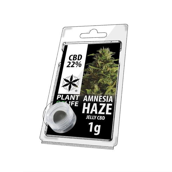 Plant of Life CBD Jelly 22% Amnesia Haze (1g)