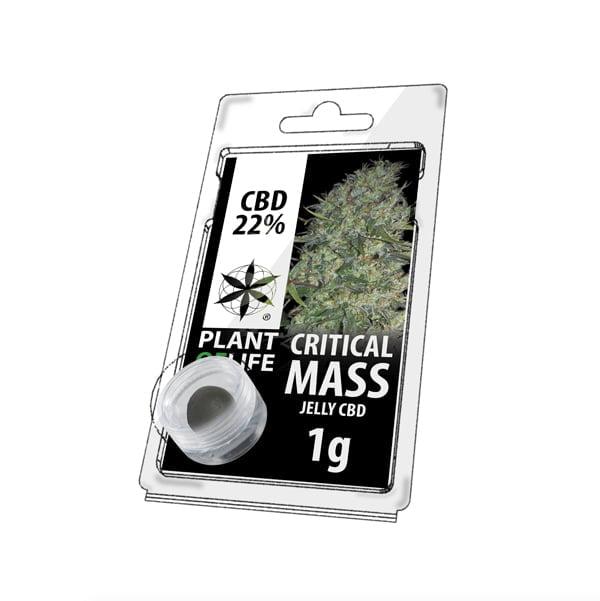 Plant of Life CBD Jelly 22% Critical Mass (1g)
