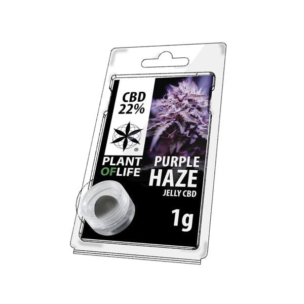 Plant of Life CBD Jelly 22% Purple Haze (1g)