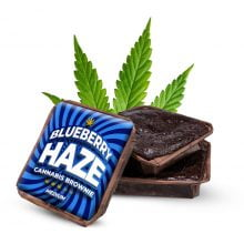 Blueberry Haze cannabis brownies THC free (40pcs/box)