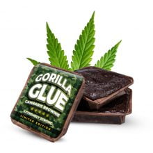Gorilla Glue cannabis brownies THC free (40pcs/box)