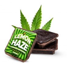Lemon Haze cannabis brownies THC free (40pcs/box)