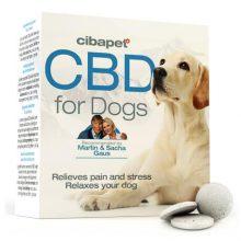 CBD For pets
