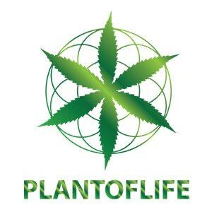 Plant of Life CBD Oils