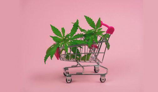 cbd-online-selling