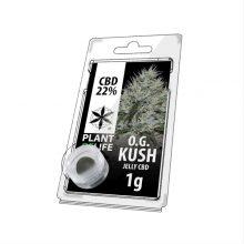 Plant of Life 22% CBD Jelly OG Kush (1g)