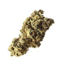 Amsterdam Genetics - Pineapple Kush (confezione 5 semi)
