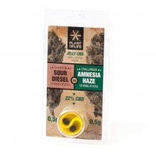 Plant of Life 22% CBD Jelly Sour Diesel vs Amnesia Haze (1g)