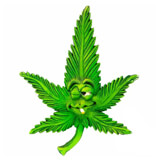 Calamite in stile Cannabis